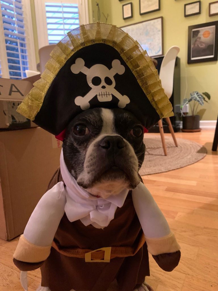Wee-Pirate